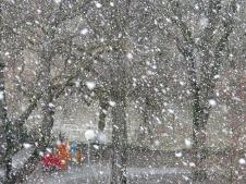 snowfall-16317_640